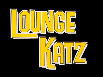 The Lounge Katz Band | Mesa, AZ | Cover Band | Photo #25