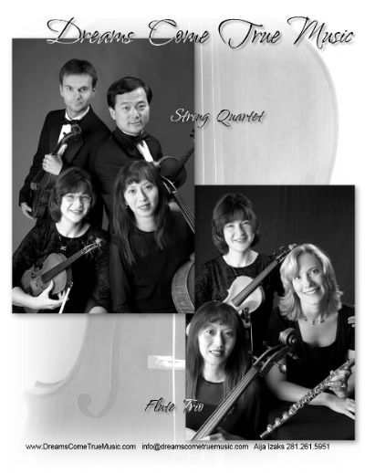 Dreams Come True Music | Richmond, TX | Classical String Quartet | Photo #2