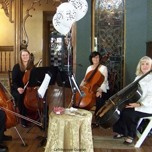Palmer Lake Chamber Music Quartet | Cellidoscope String  Quartet!