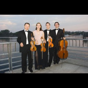 Harmonia Strings - String Quartet - Brooklyn, NY