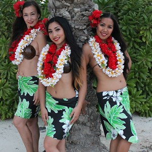 Newark Hawaiian Dancer | Aloha Hula NYC