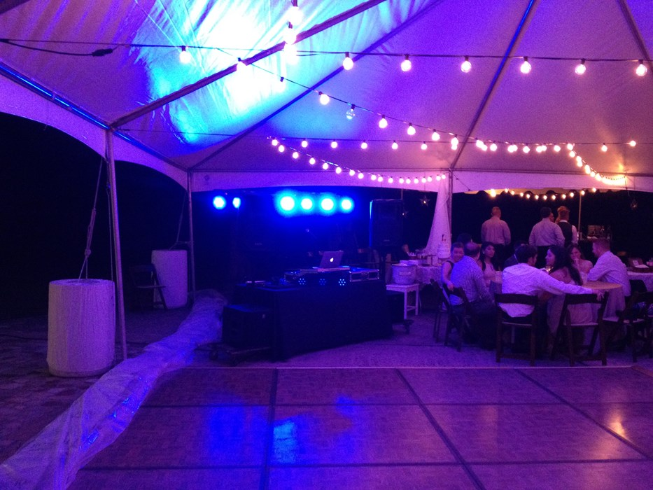 Wedding Reception, Spring, Texas