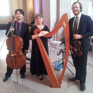 Eden Valley Celtic Trio | Amethyst Trio