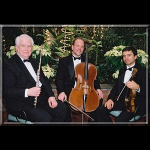 Burlington Flats Chamber Music Trio | All Seasons Ensemble