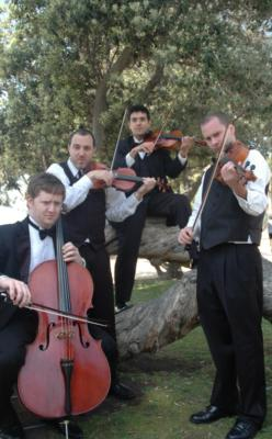 Sparrow Lane Strings | Beverly Hills, CA | Classical String Quartet | Photo #5