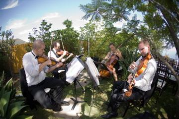 Sparrow Lane Strings | Beverly Hills, CA | Classical String Quartet | Photo #6