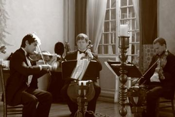 Sparrow Lane Strings | Beverly Hills, CA | Classical String Quartet | Photo #7