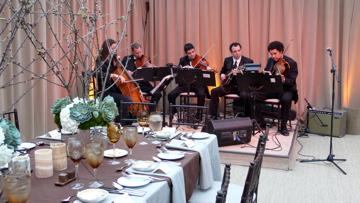 Sparrow Lane Strings | Beverly Hills, CA | Classical String Quartet | Photo #8