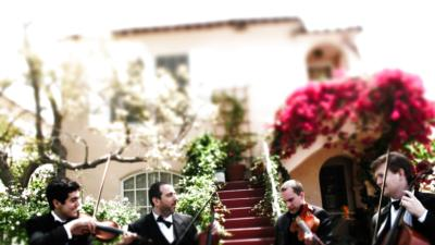 Sparrow Lane Strings | Beverly Hills, CA | Classical String Quartet | Photo #12