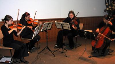 International Strings | New York, NY | String Quartet | Photo #18