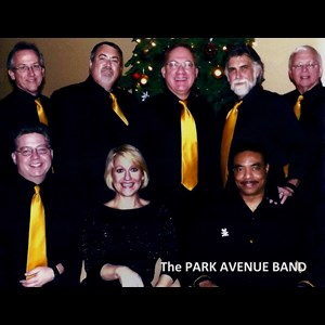 Arcadia Motown Band | The Park Avenue Band