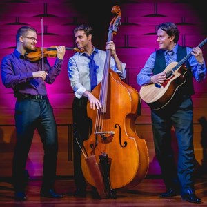 Huntington Beach World Music Trio | International Strings
