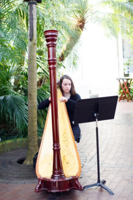 Lydia Haywood | Columbus, OH | Classical Harp | Photo #8