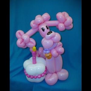 Hey Balloon Lady - Balloon Twister - San Jose, CA