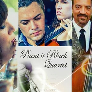 Mobile Chamber Music Duo | Paint It Black Quartet & More by Beautiful Music