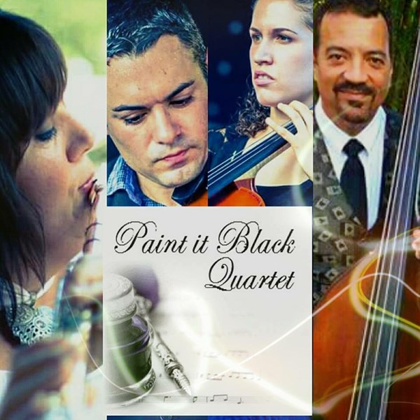 Paint It Black Quartet & More by Beautiful Music  - String Quartet - Orlando, FL