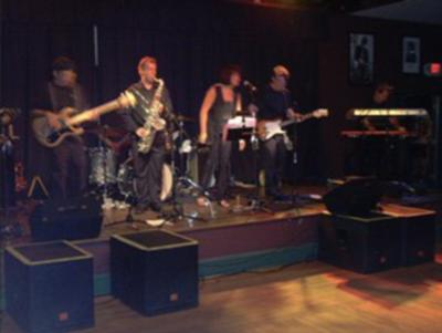 The Jersey Sure Cats | Freehold, NJ | Cover Band | Photo #5