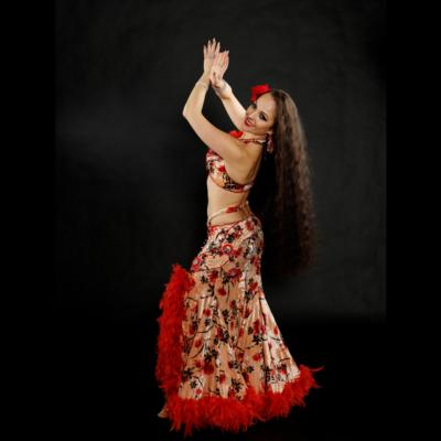 Nalini | Bellevue, WA | Belly Dancer | Photo #6