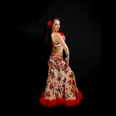 Nalini | Bellevue, WA | Belly Dancer | Photo #2