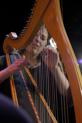 Annette Bjorling | Chicago, IL | Harp | Photo #6