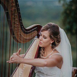Arkansas Cellist | Harp & Soul