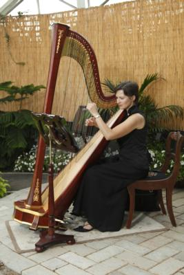 Mary Keppeler | Milwaukee, WI | Harp | Photo #7