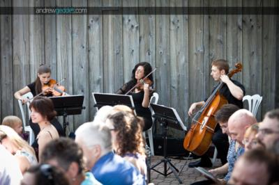 Cadenza Strings | Montreal, QC | Classical String Quartet | Photo #6