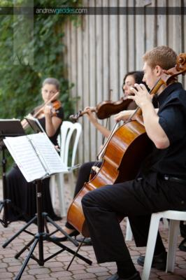 Cadenza Strings | Montreal, QC | Classical String Quartet | Photo #4
