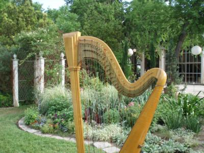 Kela Walton | Austin, TX | Harp | Photo #10