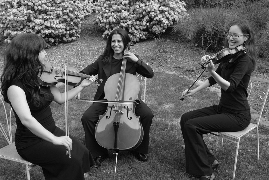 The Amherst String Ensemble - String Quartet - Amherst, MA