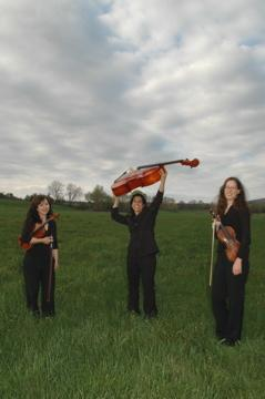 The Amherst String Ensemble | Amherst, MA | String Quartet | Photo #3