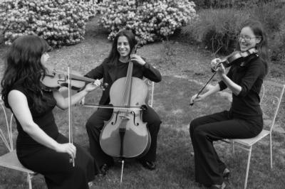 The Amherst String Ensemble | Amherst, MA | String Quartet | Photo #10