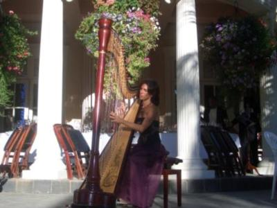 Larisa Smirnova | Pleasanton, CA | Classical Harp | Photo #2