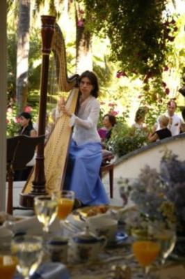 Larisa Smirnova | Pleasanton, CA | Classical Harp | Photo #5