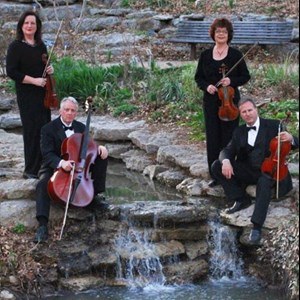 Rhome Chamber Music Duo | Forte' Strings - Duet, Trio, Quartet