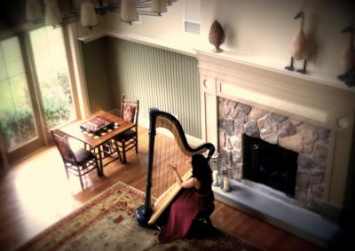 Dr. Lizary Rodriguez | Norwood, MA | Classical Harp | Photo #9