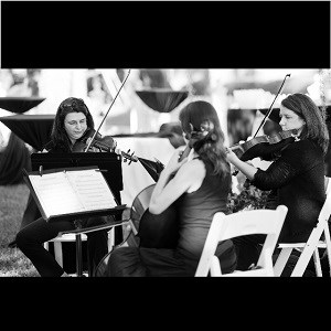 Thonotosassa String Quartet | Strings Attached, Inc.
