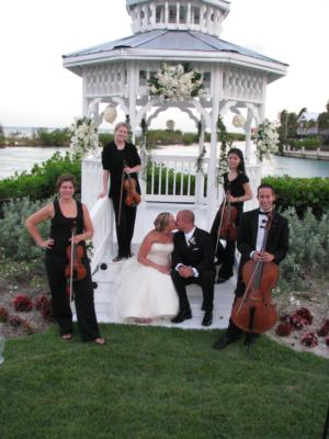 Aamusicians | Miami, FL | String Quartet | Photo #1