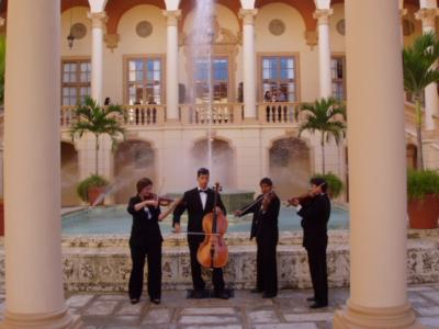 Aamusicians | Miami, FL | String Quartet | Photo #3