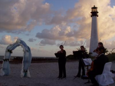 Aamusicians | Miami, FL | String Quartet | Photo #5