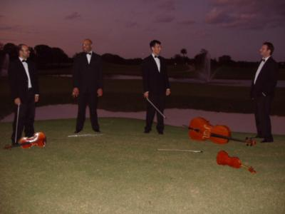 Aamusicians | Miami, FL | String Quartet | Photo #8