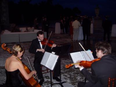 Aamusicians | Miami, FL | String Quartet | Photo #15