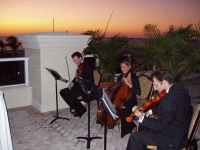Aamusicians | Miami, FL | String Quartet | Photo #17