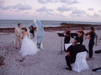 Aamusicians | Miami, FL | String Quartet | Photo #19