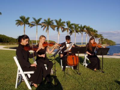 Aamusicians | Miami, FL | String Quartet | Photo #24