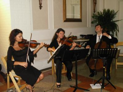 Fine Arts Wedding Musicians | New Orleans, LA | Classical Duo | Photo #12