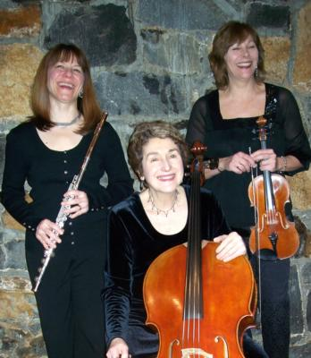 Wilmington String Ensemble | Wilmington, DE | Classical String Quartet | Photo #6