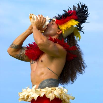 Isle Entertainment | Anaheim, CA | Hawaiian Dancer | Photo #3