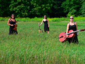 Daughters Of Newgrass - Celtic Band - Ann Arbor, MI