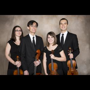 Wellington String Ensembles - String Quartet - Chicago, IL